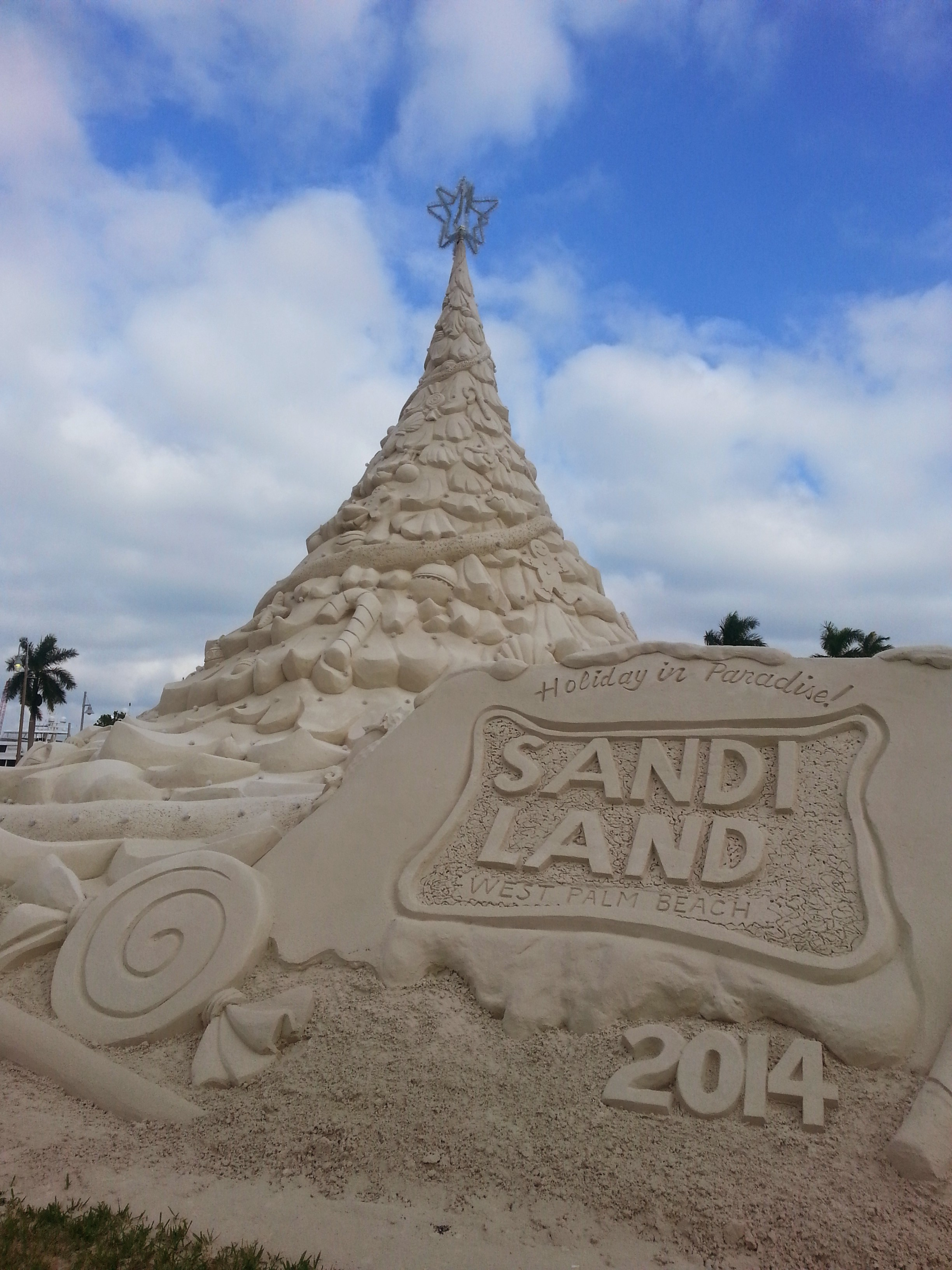 Sandi Land West Palm Beach