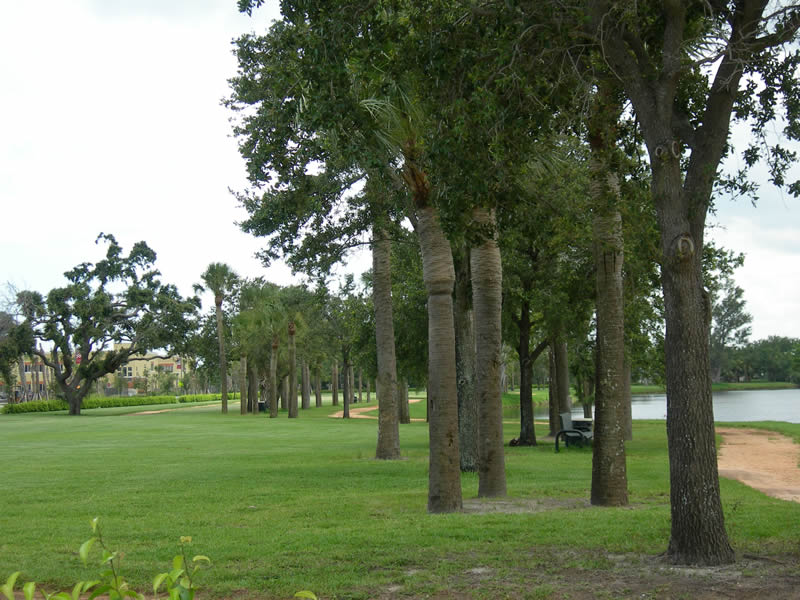 Lake Catherine Park | South Florida Finds