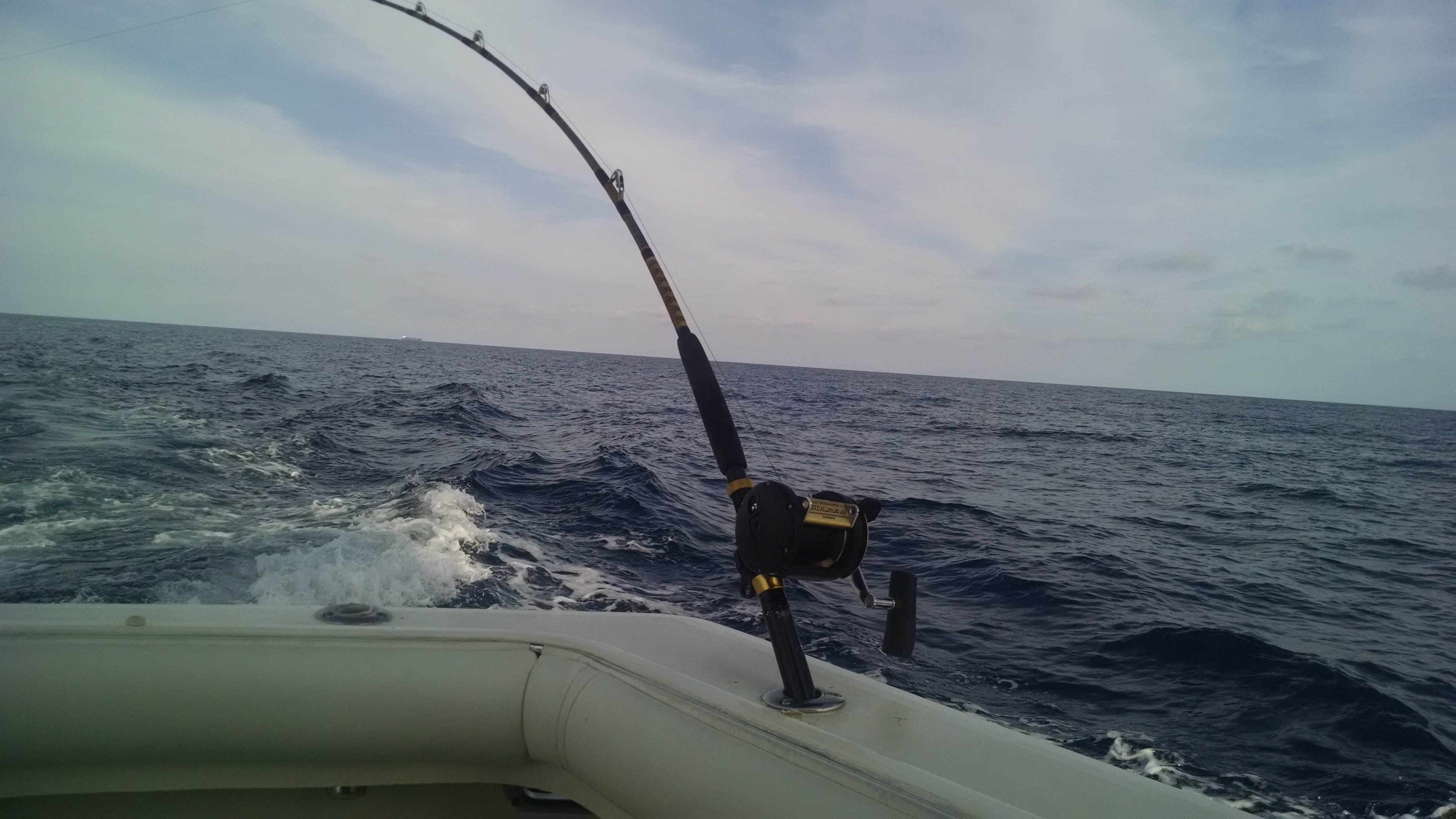 Bolo sportsfishing charters south florida finds for Deerfield beach fishing charter