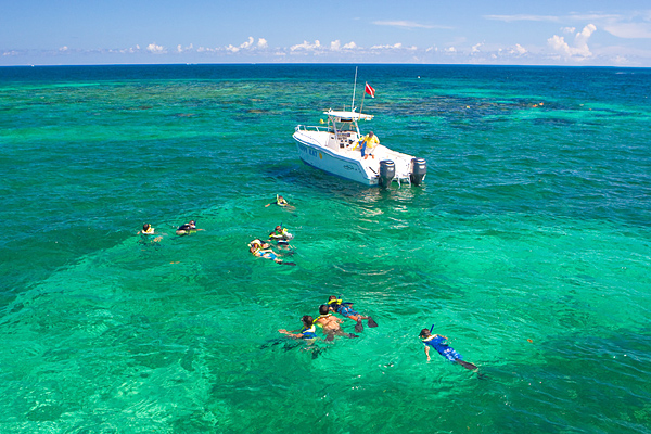 Coral Reef Tour Key West