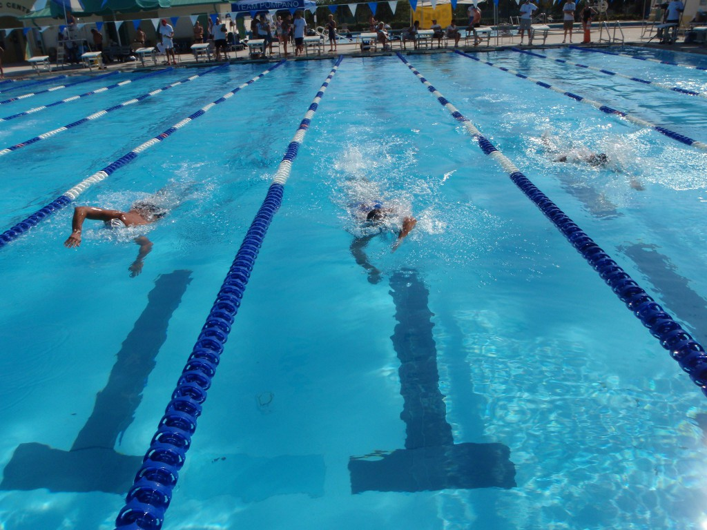Charles hadley park aquatic complex south florida finds for Swimming lap pools